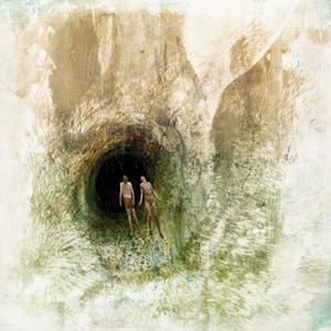 BEAK - Couple in a Hole