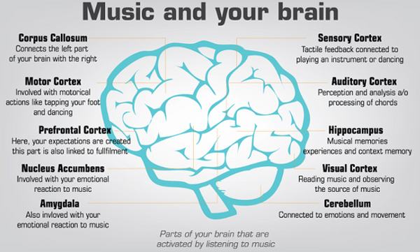 Music and your brain