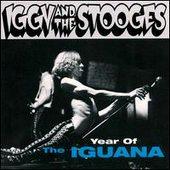 Year of the iguana