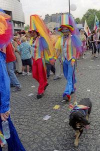 Gay 3