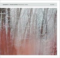 Seaworthy & Taylor Deupree - Wood, Winter, Hollow