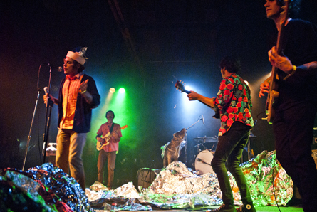 The Growlers3