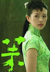 Ζανγκ Ζίγί3
