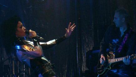 Siouxsie live 2