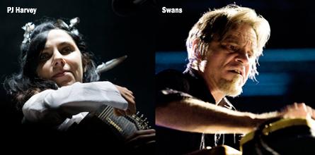 PJ Harvey Swans