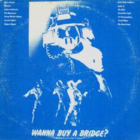 Wanna Buy a bridge.jpeg