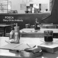 Diary of an antibody