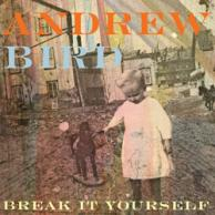 Break Andrew Bird Break it yourself