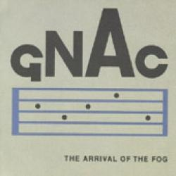 The arrival of the fog