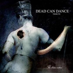 Lotus Eaters Tribute to Dead Can Dance