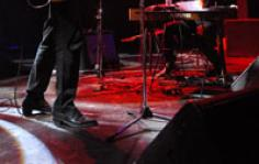 Mick Harvey 2