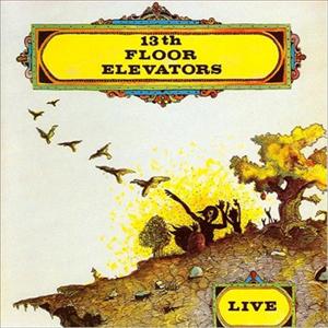 The 13th Floor Elevators - Live